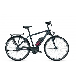 Raleigh Cardiff 8 homme 2020