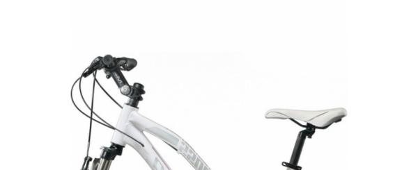 Vélo hollandais - Velonline
