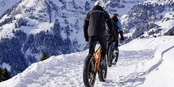 Choisir son fat bike - Velonline